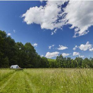 Willow Drey Pasture Tent RR site